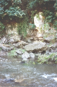 Fault exposed along Shoal Creek